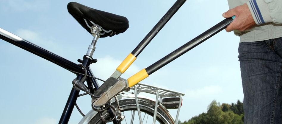 Kraja koles